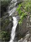 maredumilli waterfall